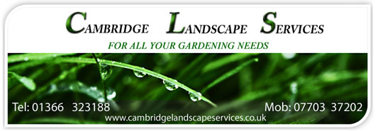 Cambridge Landscape Services Business Card contact us for year round garden maintenance for the home,rental and commercial premises. 01366 323188 or mobile 07731 977066
