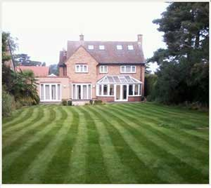 regular grass maintenance through the year